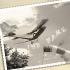 Bildpersonalisierung altes Flugzeug München